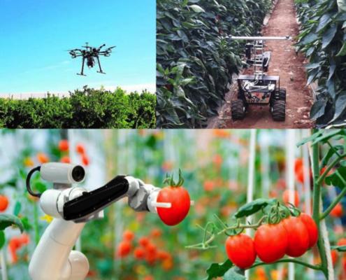 El internet de las cosas en el campo de la agricultura